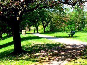 Birchfields_Park_20160514 (17)