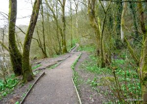 Daisy_Nook_country_park_20160319 (14)