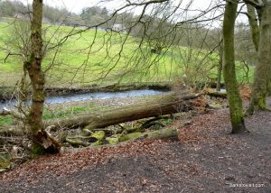 Daisy_Nook_country_park_20160319 (28)