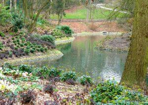 Queens_park_Bolton_20160227 (23)