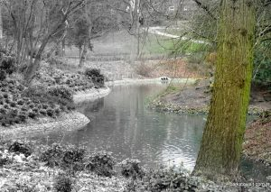 Queens_park_Bolton_20160227 (24)