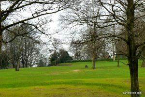 Queens_park_Bolton_20160227 (4)