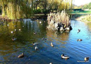 Stamford_park_Ashton_under_Lyne_20151102 (1)