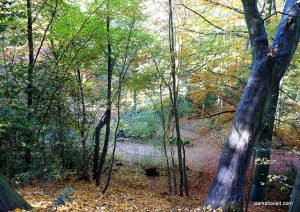 Stamford_park_Ashton_under_Lyne_20151102 (12)