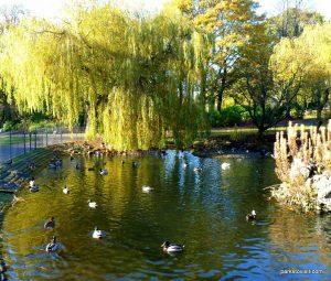 Stamford_park_Ashton_under_Lyne_20151102 (4)
