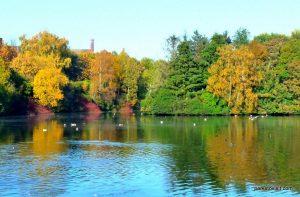 Stamford_park_Ashton_under_Lyne_20151102 (5)