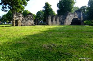 Dudley_Priory Park_062018 (15)