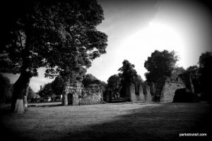 Dudley_Priory Park_062018 (16)