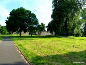 Dudley_Priory Park_062018 (32)