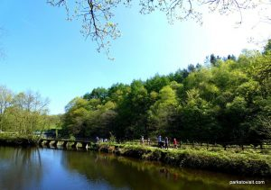 Etherow_Country_park_Stockport_052018 (29)