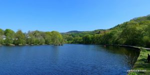 Etherow_Country_park_Stockport_052018 (58)