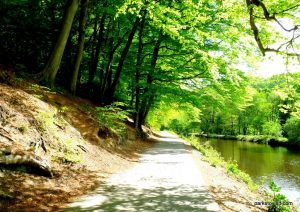 Etherow_Country_park_Stockport_20160515 (17)