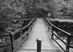 Etherow_Country_park_Stockport_20160515 (18)