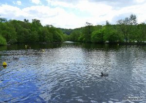 Etherow_Country_park_Stockport_20160515 (2)