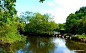 Etherow_Country_park_Stockport_20160515 (21)