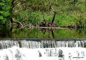 Etherow_Country_park_Stockport_20160515 (25)