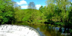 Etherow_Country_park_Stockport_20160515 (26)