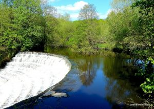 Etherow_Country_park_Stockport_20160515 (27)