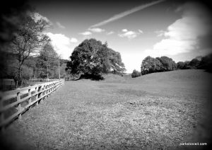Etherow_Country_park_Stockport_20160515 (28)
