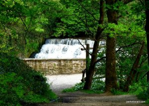 Etherow_Country_park_Stockport_20160515 (30)