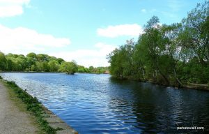 Etherow_Country_park_Stockport_20160515 (40)