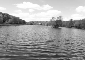 Etherow_Country_park_Stockport_20160515 (41)
