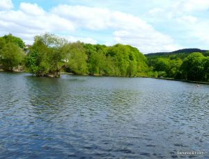 Etherow_Country_park_Stockport_20160515 (42)