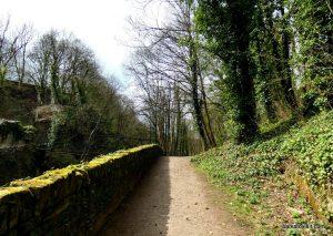 Millennium Walkway_New Mills_042018 (15)
