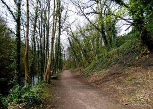 Millennium Walkway_New Mills_042018 (16)