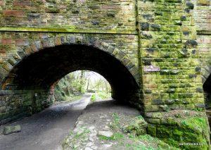 Millennium Walkway_New Mills_042018 (25)