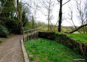 Millennium Walkway_New Mills_042018 (30)