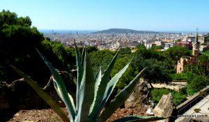 Park Guell_Barcelona_072017 (16)
