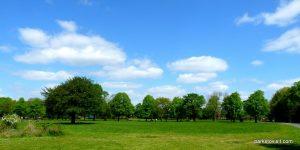 Platt_Fields_Park_Manchester_20160514 (41)