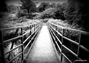 Reddish_Vale_Country_Park_20160901 (282)