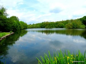 Roman Lakes Leisure Park_201706 (14)