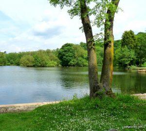 Roman Lakes Leisure Park_201706 (17)