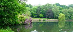 Roundhay_park_Leeds_20160611 (28)