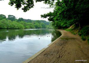 Roundhay_park_Leeds_20160611 (49)