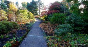 Royal Botanic Garden Edinburgh_201711 (13)