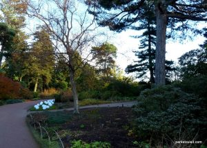 Royal Botanic Garden Edinburgh_201711 (14)