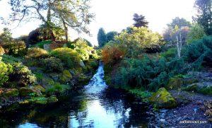 Royal Botanic Garden Edinburgh_201711 (16)