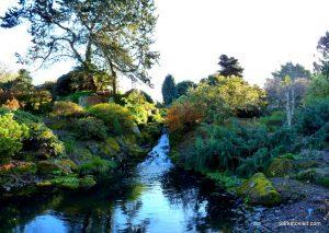 Royal Botanic Garden Edinburgh_201711 (17)