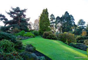 Royal Botanic Garden Edinburgh_201711 (18)