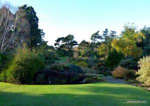 Royal Botanic Garden Edinburgh_201711 (22)
