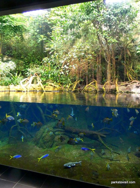 Aquarium Berlin, Berlin