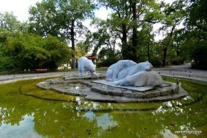 Berlin Zoo_092018 (14)