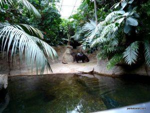 Berlin Zoo_092018 (163)