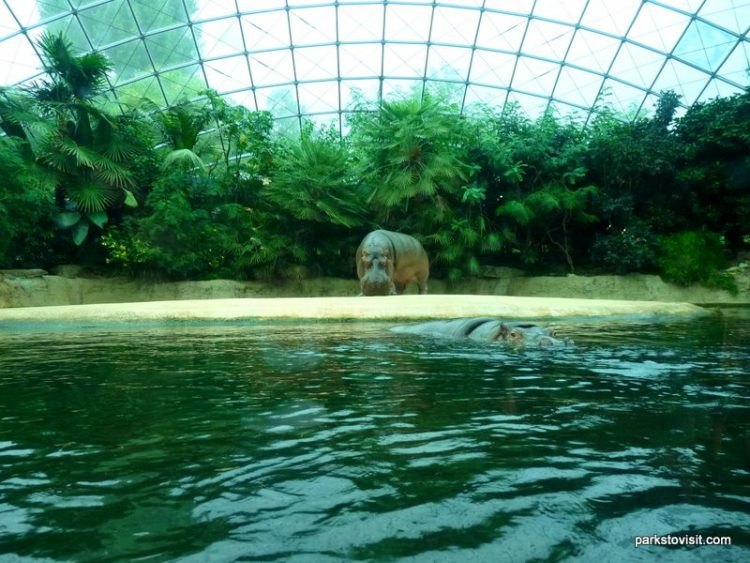 Zoo Berlin, Berlin