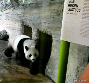Berlin Zoo_092018 (44)