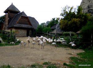 Budapest Zoo_092018 (29)
